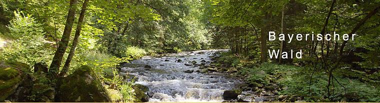 Freizeitangebot im Bayerischen Wald